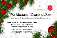 Image for event: Christmas Avenue of Trees