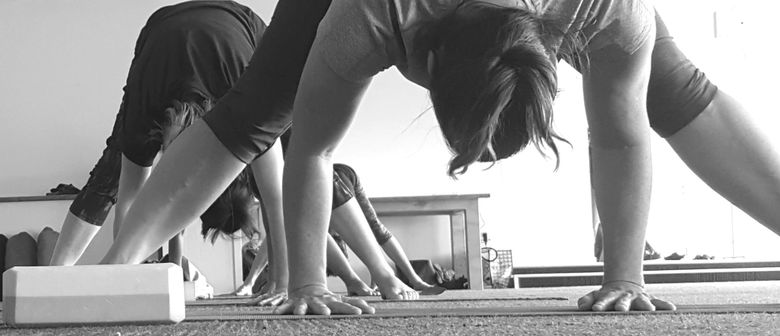 Yoga Basics Course