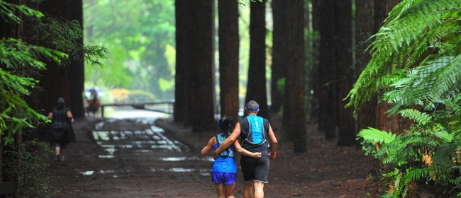 Rotorua Running Festival