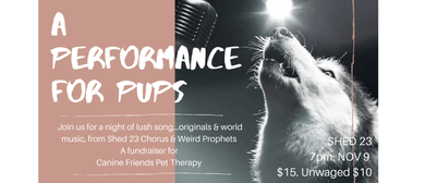 A Performance for Pups