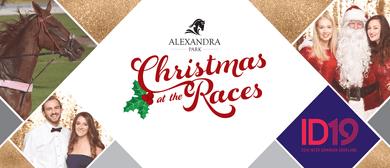 Alexandra Park Christmas at the Races