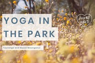 Image for event: Summer Yoga In the Park: Mount Maunganui