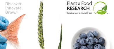 Sustainable Food Production and CRISPR Crops