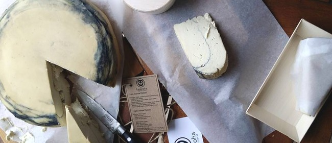Introductory Vegan Cheese-crafting