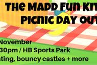 Madd Fun Kite & Picnic Day