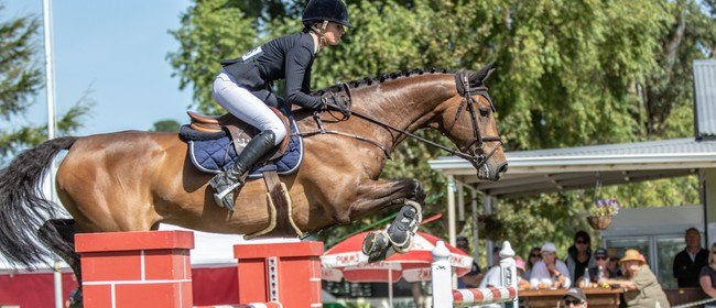 Tavendale & Partners' National Show Jumping Show