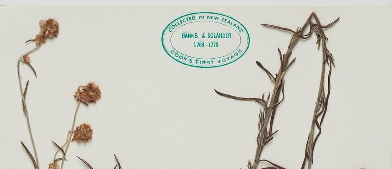 Panel Talk: The Politics of Collecting Plants