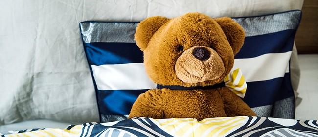 Teddy Bear Holiday Sleepover