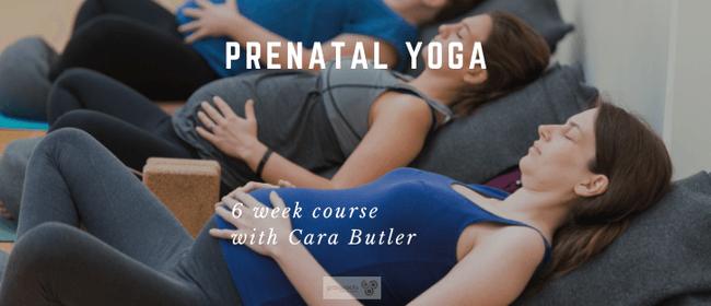 Prenatal Yoga Course