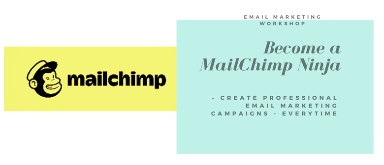 Mailchimp Training for Business 101