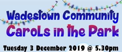 Wadestown Community Carols In the Park