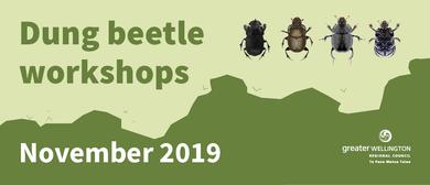 Dung Beetle Workshop 2019 - 1