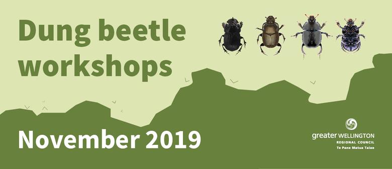 Dung Beetle Workshop 2019 - 2