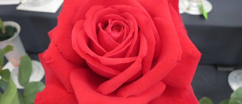 Rose & Flower Show