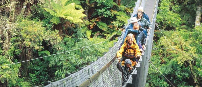 Swing Bridge Guided Walk at Kaitoke