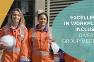 Image for event: Excellence in Workplace Inclusion