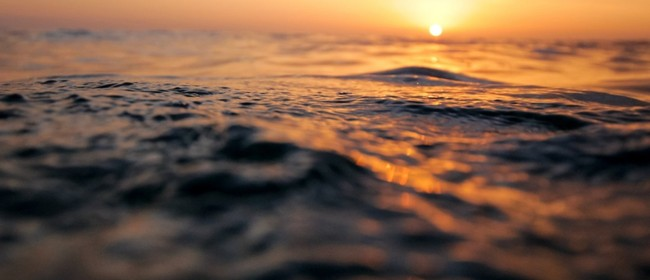 Intermediate Sunset Snorkel Tours