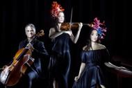 Classical Expressions 2020: NZ Trio