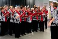 Image for event: Dunedin Harmony Chorus and Highland Harmony