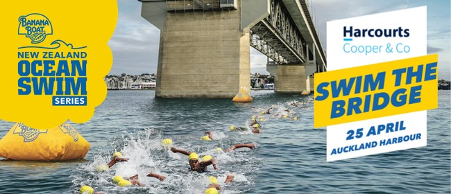 Harcourts Cooper & Co Swim the Bridge