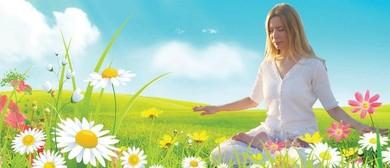 Falun Dafa Meditaion Class