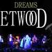 Fleetwood Mac Experience