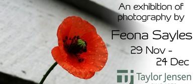 Feona Sayles: Flora & Fauna