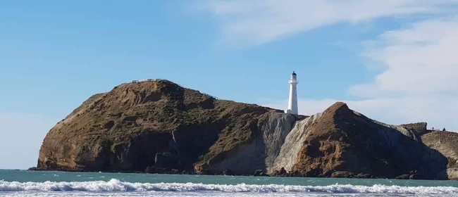 Castlepoint Fishing Competition 2020