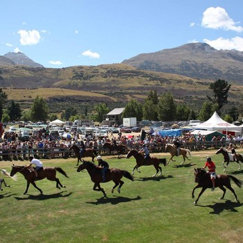 The Pig's Glenorchy Races Breakfast + Bus