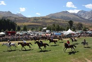 Image for event: The Pig's Glenorchy Races Breakfast + Bus