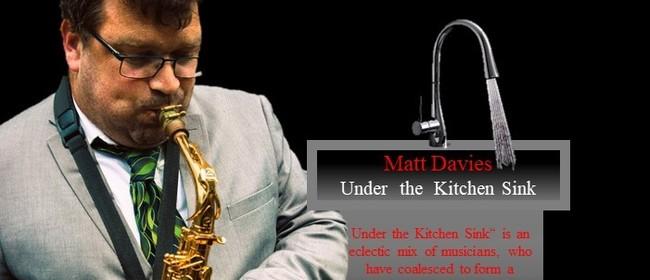Matt Davis Under the Kitchen Sink