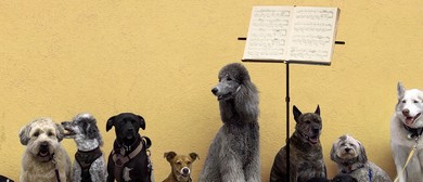 Concert for Dogs
