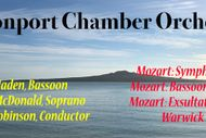 Image for event: Devonport Chamber Orchestra - Mozart Magic
