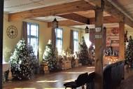 Image for event: Christmas Wonderland