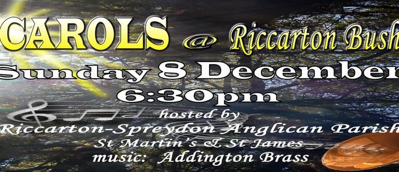 Carols at Riccarton Bush