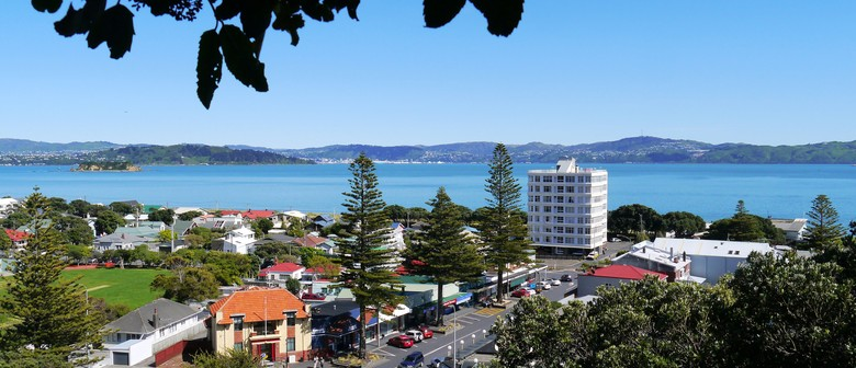 Petone and Eastern Bays: Day Trip