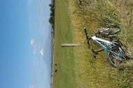 Image for event: Rotokare Loop Mountain Bike Trail