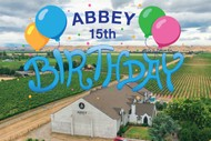 Abbey Estate 15th Birthday Party