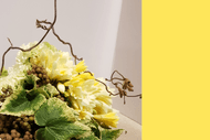 Image for event: Creative Floral Design