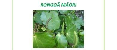 Rongoa - Traditional Maori Medicines
