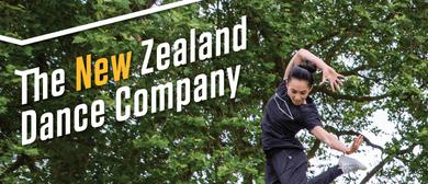 NZDC Youth Summer School 2020