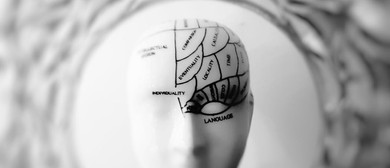Brain Development: The Early Years