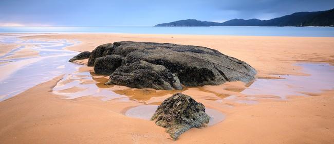 South Island Beaches & Bays Photo Tour - 7 Days