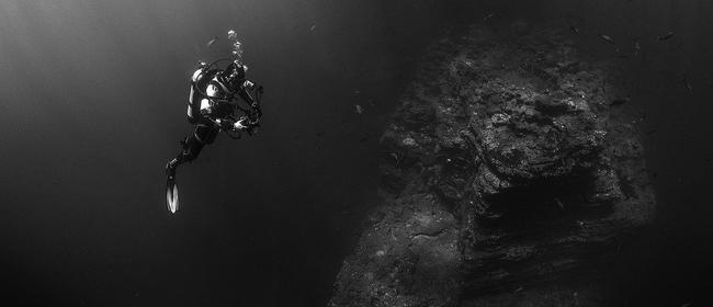 Seaweek: Ocean Life - From Skies Above to Deep Below