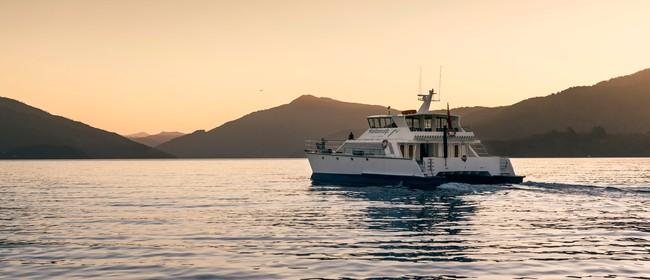 Twilight Cruise Marlborough Sounds