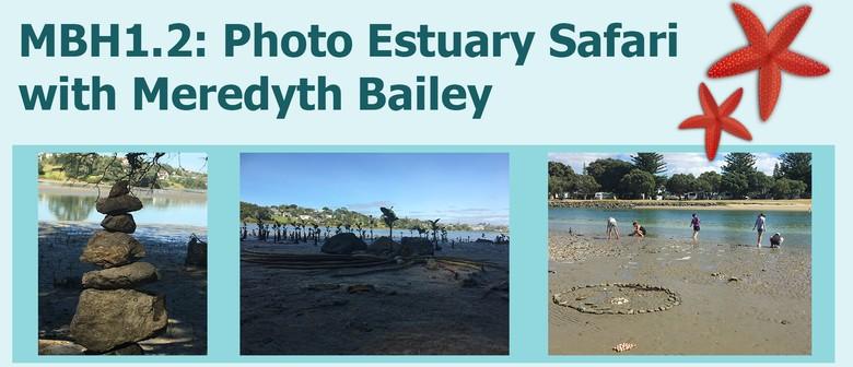 MBH1.2: Photo Estuary Safari with Meredyth Bailey