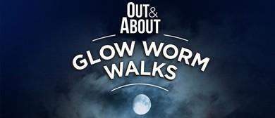 Glow Worm Walks