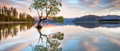 Wanaka Autumn Masterclass Workshop - 4 <em>Days</em>