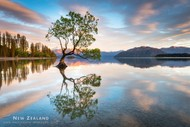 Wanaka Autumn Masterclass Workshop - 4 Days