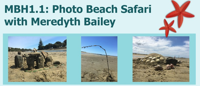 MBH1.1: Photo Beach Safari with Meredyth Bailey: CANCELLED